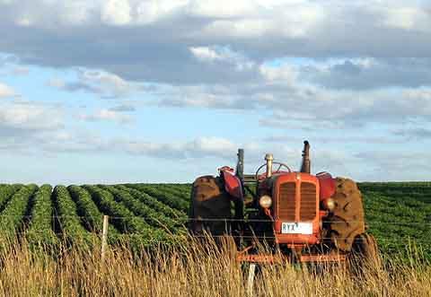 Roma: Summit nazionale sulla riforma della Politica agricola comune