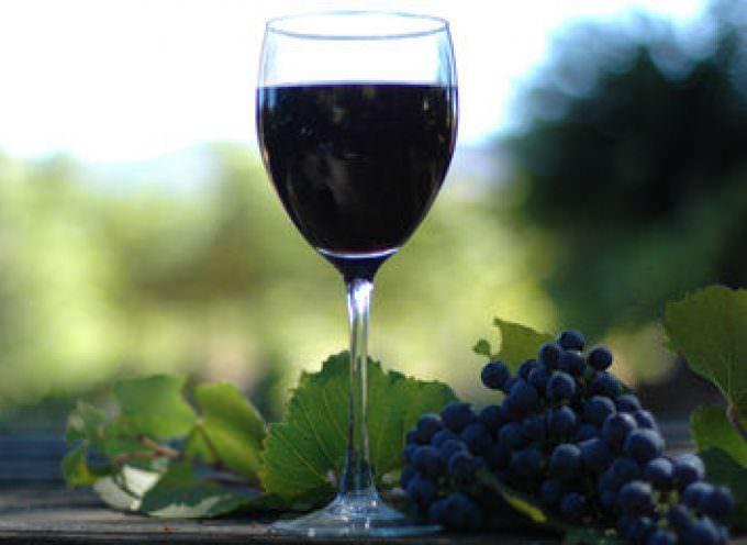 Progetto Vts : vino sano, ambiente protetto, costi minori