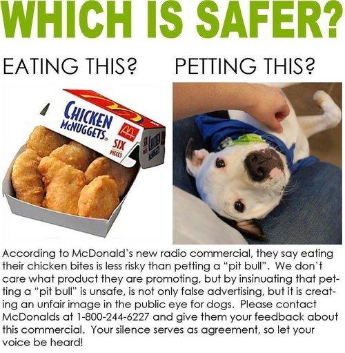 Il pitbull o le crocchette? Uno spot McDonald's indigna gli animalisti