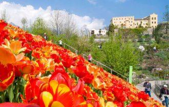 Giardini di Sissi di Merano: La nuova stagione apre domenica 1° aprile