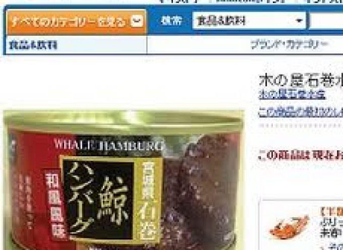 Amazon ritira i prodotti con carne di balena dal sito