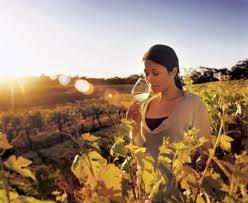 Viaggio in South Australia, tra lezioni di cucina, assaggi e relax