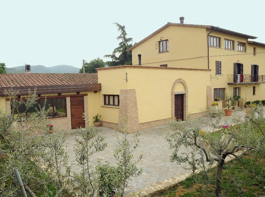 L'Azienda Agricola Decimi e le sue 3000 piante di olivo