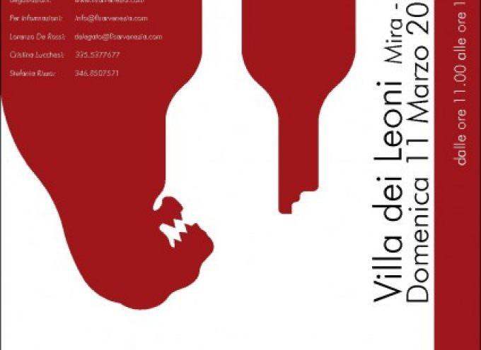 Mira (VE). Nella Villa dei Leoni s'incontrano il Vino e l'acqua