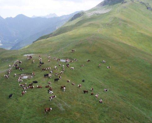 Escursione naturalistica a Monte Inici e degustazione di prodotti genuini