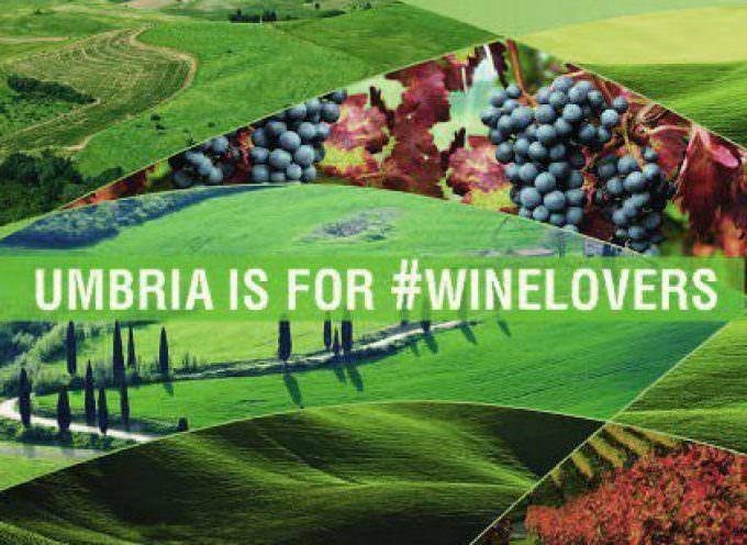 Umbria wine is Hi-Tec, Umbria wine is for #winelovers