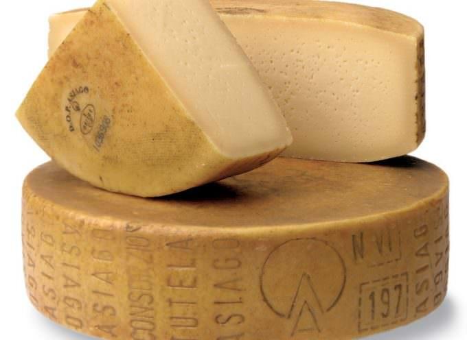 Vinitaly: Matrimonio tra Asiago DOP Stagionato e i cento migliori vini italiani