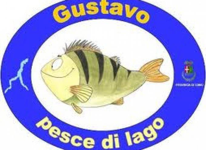 Gustavo pesce di lago: ad Erba un 1 maggio di cucina insubre