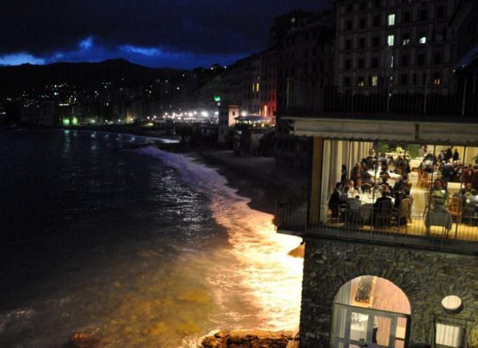"""""""VinidAmare"""" 2012, un successo dei vini di Liguria"""
