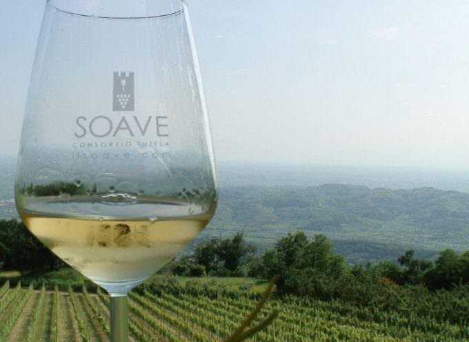 Al via Vulcania 2012, il forum internazionale dei vini bianchi da suolo vulcanico