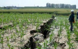 Terremoto: 8mila lavoratori nell'agroalimentare rischiano il posto di lavoro