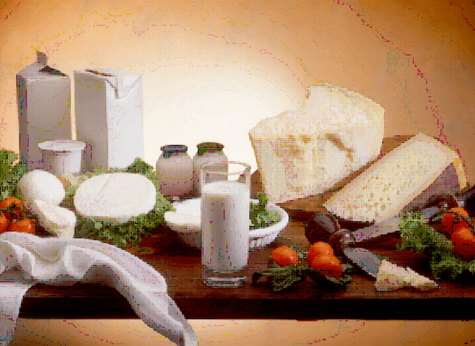 Latte, yogurt e formaggio. Obiettivo: no spreco alimentare