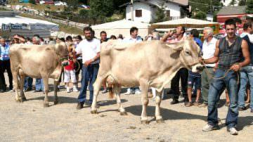 Fiera di S. Alessandro 2012 a Bergamo