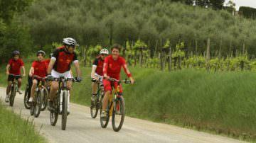 Tuscany Wine and Bike: la Toscana del vino ed una bicicletta