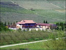 Vino libero: la nuova via del vino secondo Oscar Farinetti