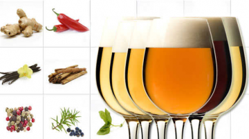Birra e spezie: a ciascuna, le sue