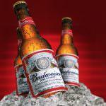 Budweiser, il nuovo sogno americano passa dalla birra