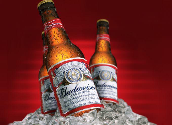Troppa acqua nella birra: Budweiser sotto accusa