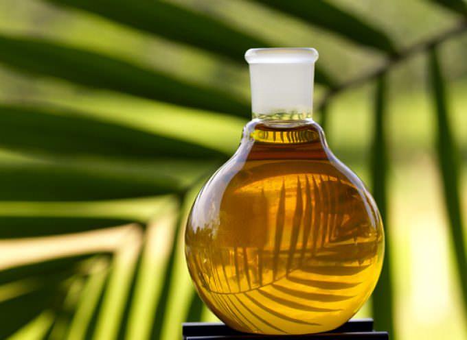 """Guerra della Nutella, la Malesia attacca: """"Irresponsabile"""" la tassa sull'olio di palma"""