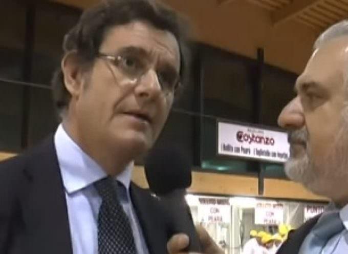 Massimo Gazzani: le novità della 47ª Fiera del Riso 2013, Isola della Scala -Programma completo