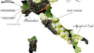 Ecco la rete Vino Libero: no additivi e diserbanti, pochi solfiti