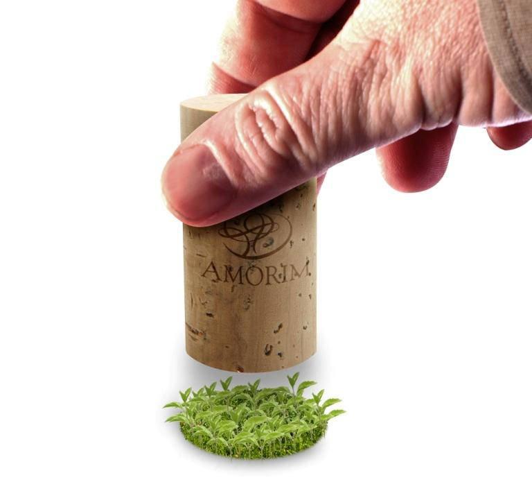 Tappi in sughero: Amorim Cork Italia registra un +2,53% per il 2012