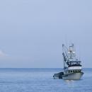 16 maggio: Apre la stagione della pesca del salmone selvaggio dell'Alaska