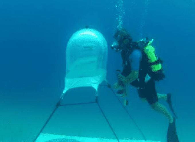 Savona, l'Orto di Nemo: basilico sul fondo del mare