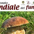I Funghi di Fra Ranaldo, Il Campionato Mondiale del Fungo