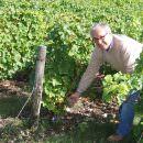 """Giampietro Comolli in Francia: 30 giorni """"immerso"""" nel vino (Parte 1 di 5: Vino Biologico)"""