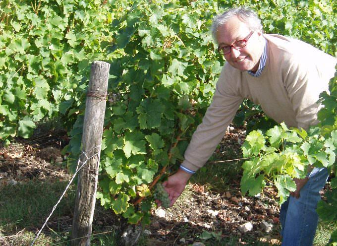L'Italia del Vino: consumi interni ancora in calo, è giusto puntare tutto sull'export?