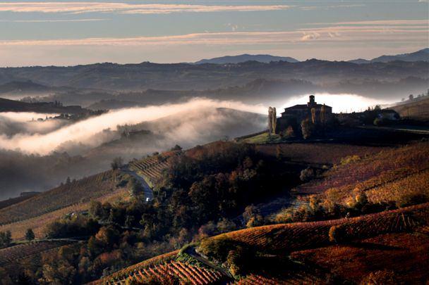 Piemonte Anteprima Vendemmia 2013: a Milano presentati i dati dell'annata vitivinicola