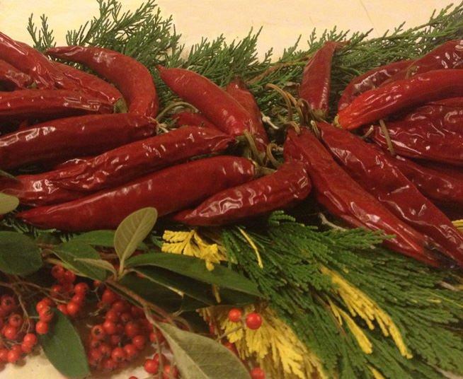 Basilicata: Nasce la Delegazione dell'Accademia nazionale del peperoncino