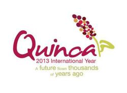Coltivazione Quinoa in Italia: matrimonio possibile?