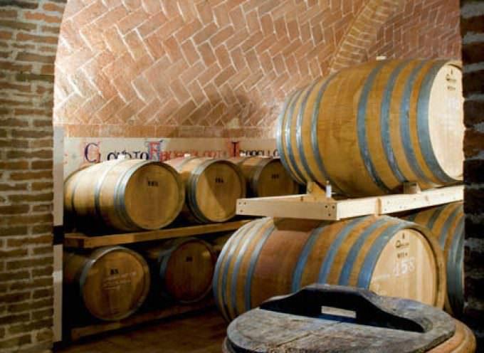 Vino, vendemmia 2014: Italia è seconda ma l'Europa è primissima (almeno per ora)