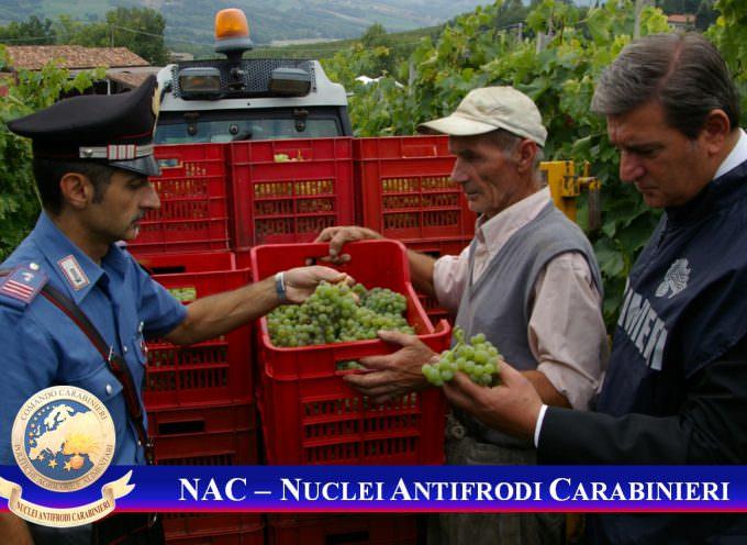 I NAC alla 48^ edizione di Vinitaly, Comando Carabinieri Politiche Agricole e Alimentari: Prevenzione, Consapevolezza ed Educazione