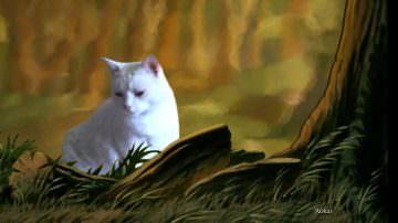 Mostra di quadri dedicata ai gatti