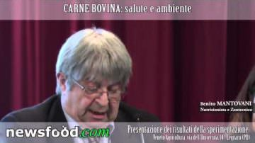 Dopo il Grufolino, il Manzetto di Benito Mantovani – Convegno CARNE BOVINA: salute e ambiente
