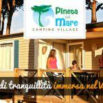 Le offerte per l'estate 2015 al Pineta sul Mare Camping Village