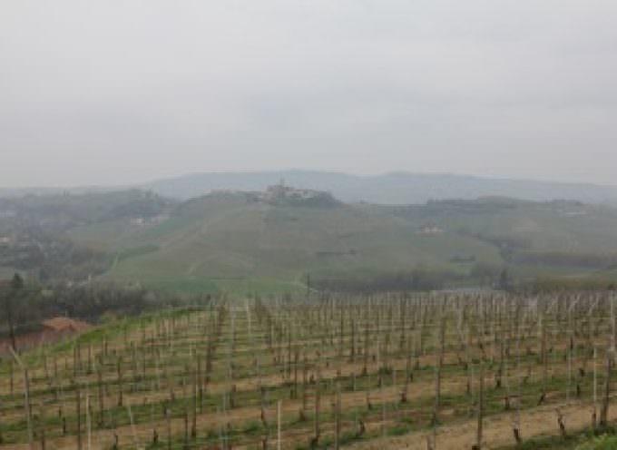 L'Azienda Agricola Cascina Brettarossa al Cibus 2014