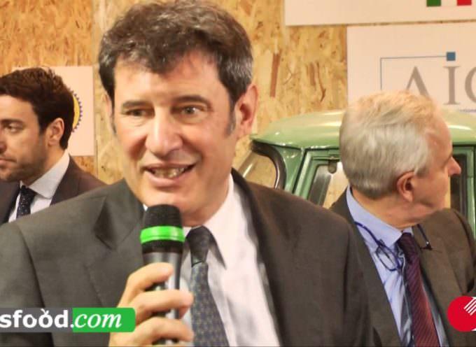 Stefano VACCARI: Protocollo d'intesa Mipaaf eBay Aicig a Cibus 2014 – Prima  Parte
