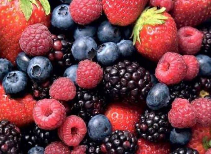 Frutti di bosco surgelati contaminati da epatite A: Colpiti 1.787 italiani