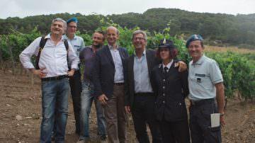 Testo ed etichetta di Andrea Bocelli per il vino dei detenuti Gorgona di Frescobaldi