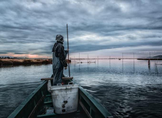 Domenica 29 giugno, Peschiere aperte e Festa dell'anguilla ai Pescatori di Orbetello