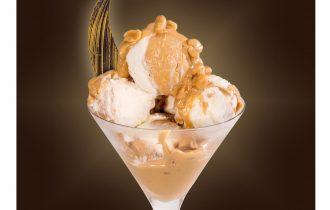PinoPinguino: La linea di gelati PreGel che si caratterizza per morbidezza e versatilità