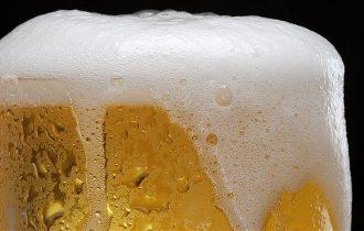 Bevi birra, assumi plastica