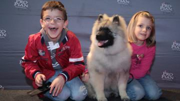 Domenica 6 luglio: 9°edizione della PRO PLAN CUP, la manifestazione cinofila privata più importante in Europa per numero di cani iscritti