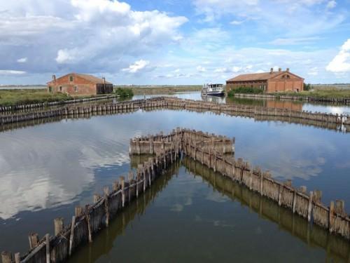 Comacchio, trappola per anguille