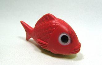 """Inquinamento """"da plastica"""" dei mari, e dei pesci che arrivano sulle nostre tavole pieni di scorie plastiche tossiche"""