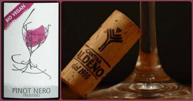 Pinot Nero Cantina di Aldeno: il primo Vino vegano certificato arriva dal Trentino